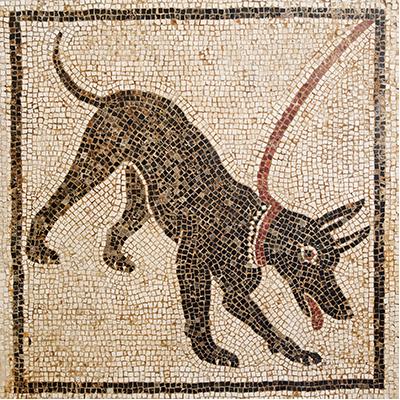 Blaffende honden bijten niet! Naar een eigentijds cynisme | David Rijser